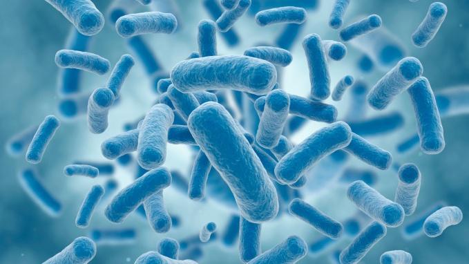 usana microbiome products